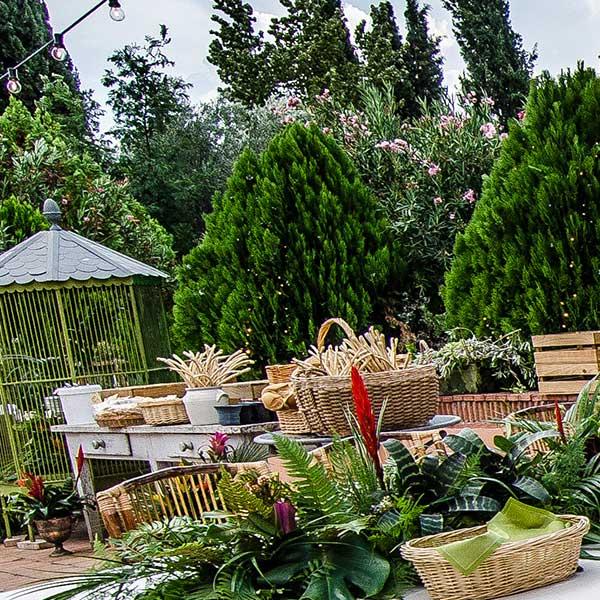 decoración de evento en el jardín